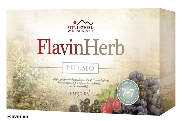 FlavinHerb Pulmo ital (10x50ml)  - 15000 Ft